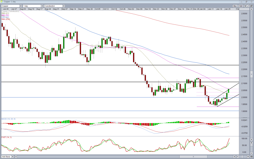 Copper Daily