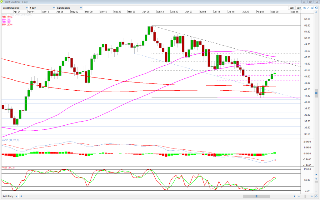Brent Daily