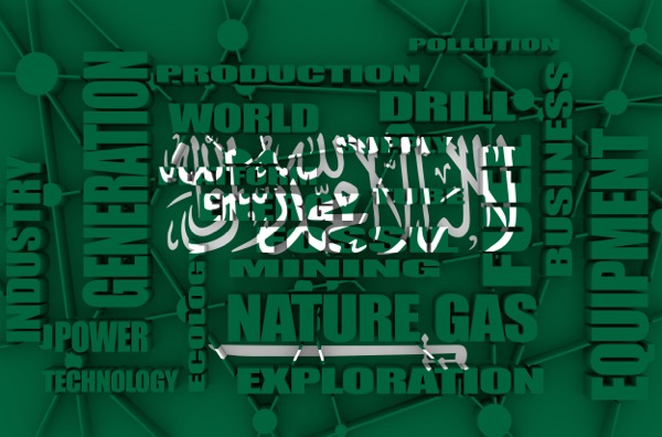 Saudi Arabia Leading $1 Trillion Investment in Middle East and North Africa - MarketPulse
