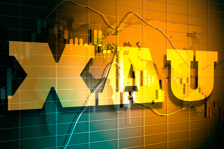 Forex market pulse
